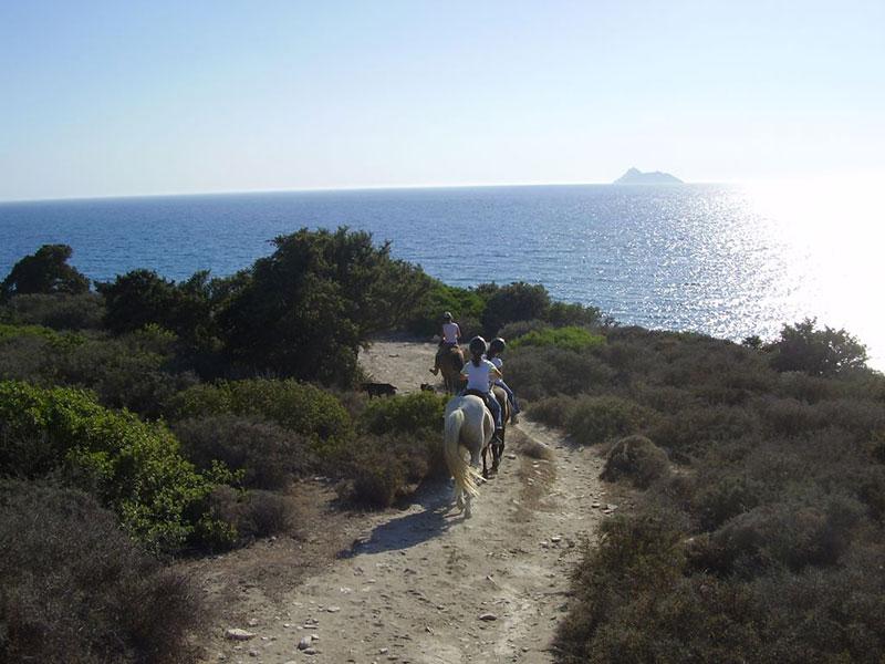 Horse riding Pitsidia